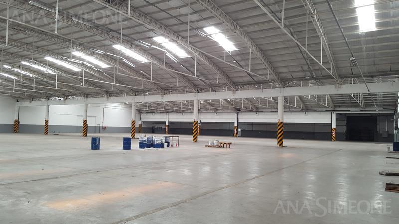 Excelente nave industrial de 7.550 m2 -  Pablo Podesta