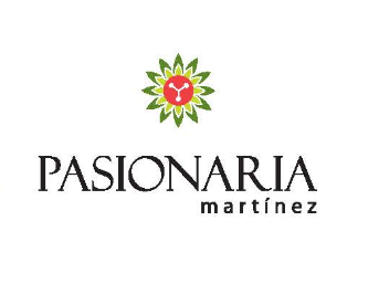 Foto  en Martinez Hipólito Yrigoyen, entre Parana y Lima