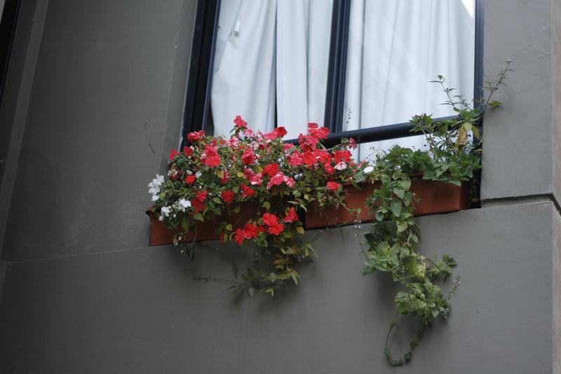 Foto Barrio Privado en San Miguel De Tucumán Dúplex 2 Dorm Financiados 4750 - Alt. Av A. Guzmán 350, frente Shopping Portal numero 17