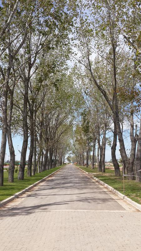 Foto unidad Terreno en Venta en  Canning,  Esteban Echeverria  Lote  - Etapa 2 - La Alameda