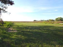 Foto Otro en Norte 417 e/ 300 y 428 numero 4
