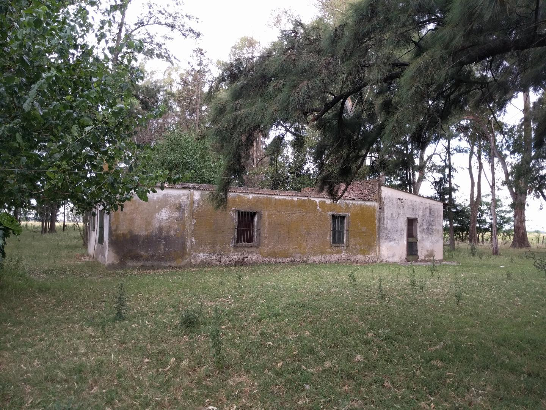 Foto Campo en Venta |  en  San Eladio,  Lujan  San Eladio
