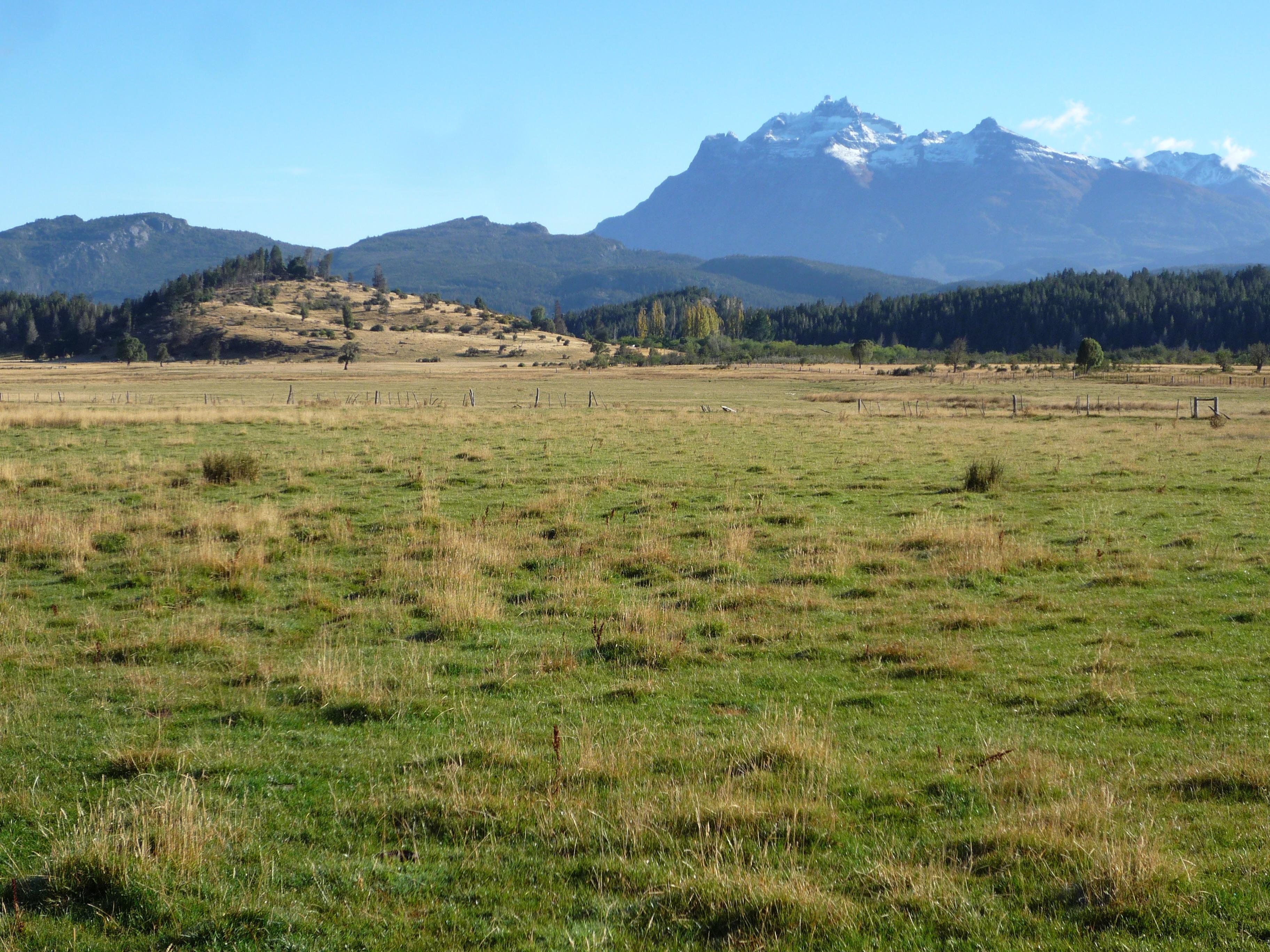 Foto Campo en Venta |  en  Trevelin,  Futaleufu  Los Cipreses