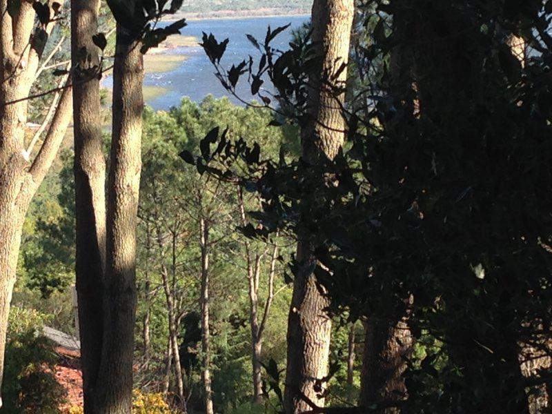 Foto Terreno en Venta en  Las cumbres ,  Maldonado  Las cumbres