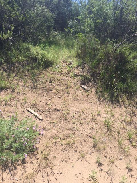 Foto Campo en Venta en  General Acha,  Utracan  General Acha. La Pampa
