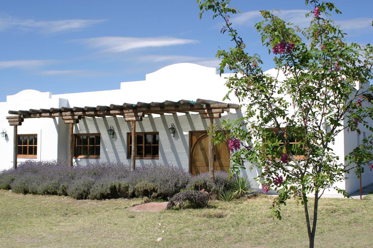 Foto Fincas en Venta en  San Rafael ,  Mendoza  Calitina Wine Resorts - Las Paredes.