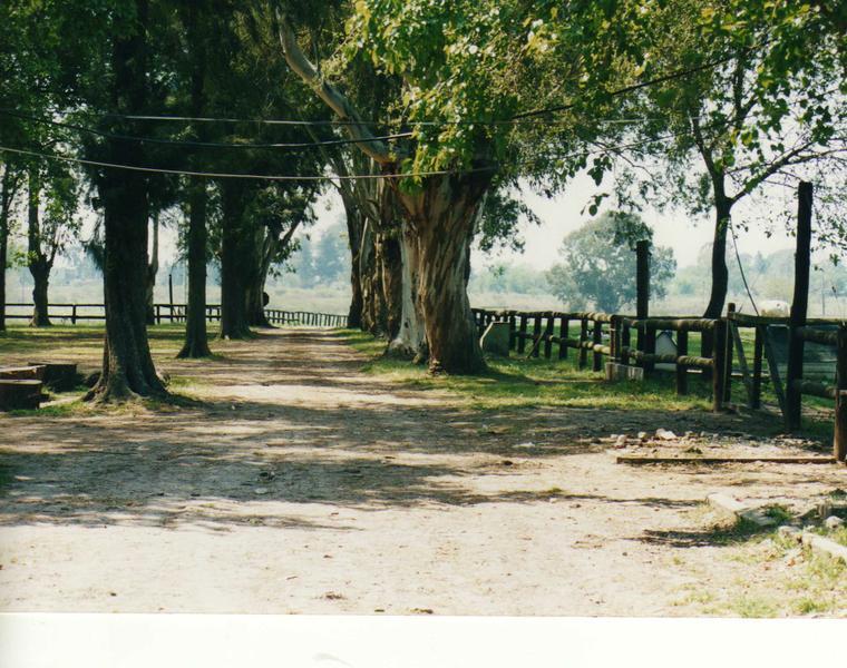 Foto Terreno en Venta en  Villa Rosa,  Pilar  San Isidro 0