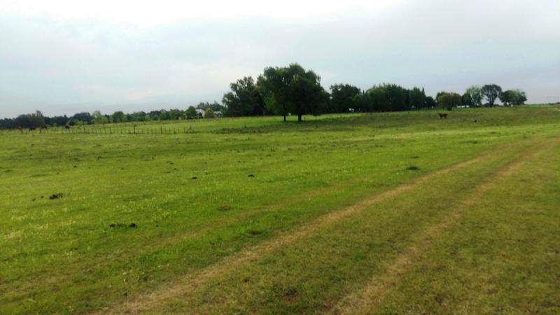 Foto Campo en Venta en  Campana ,  G.B.A. Zona Norte  16 Hectáreas  sobre Ruta 4.