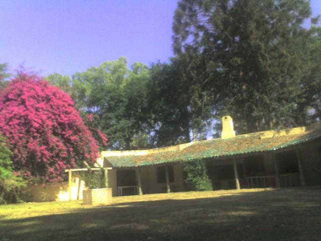 Foto Terreno en Venta en  Villa Rosa,  Pilar  Misiones al 1900