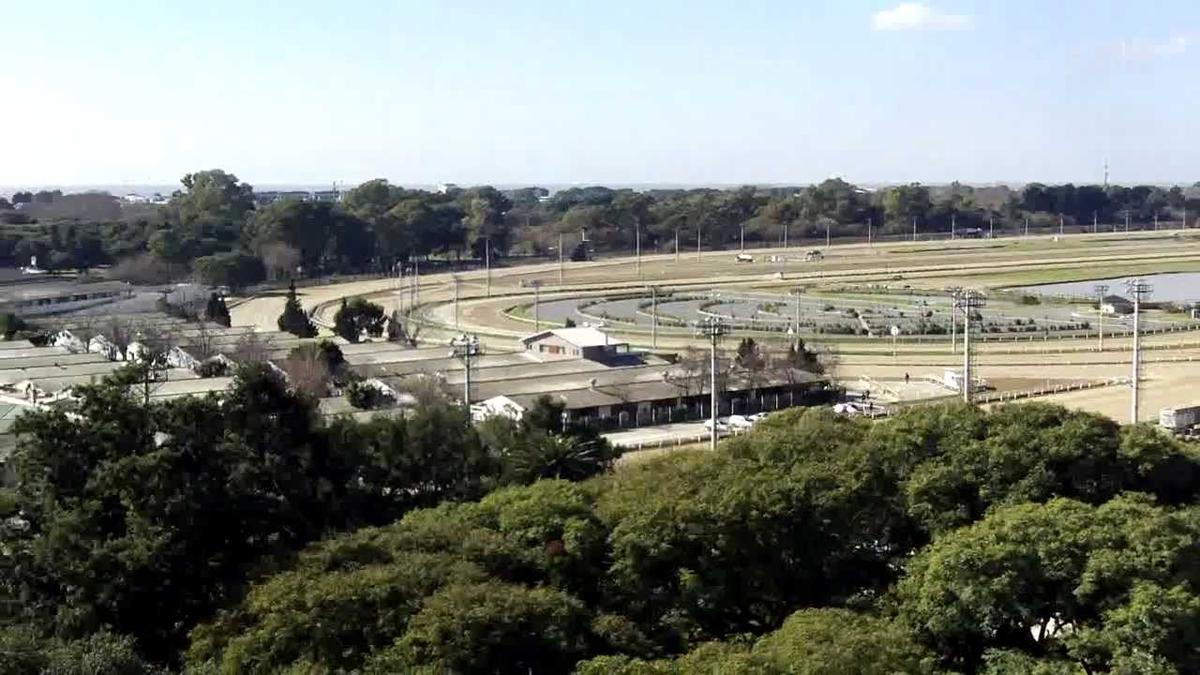 Foto Departamento en Alquiler en  Belgrano ,  Capital Federal  Av. Libertador 4800