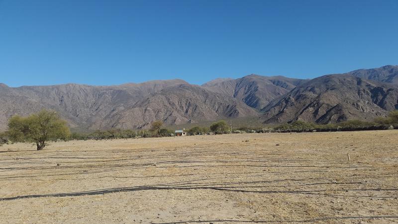 Foto Campo en Venta |  en  Colalao Del Valle,  Tafi Del Valle  Ruta 40