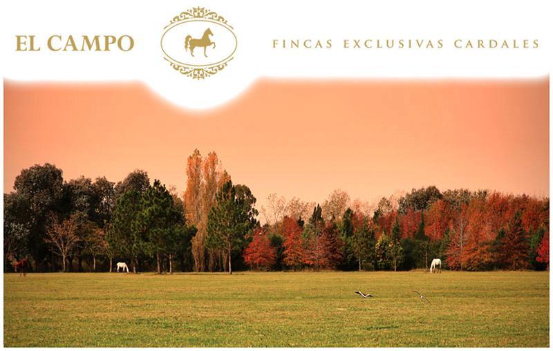 Foto Terreno en Venta en  El Campo - Fincas Exclusivas Cardales,  Countries/B.Cerrado  El Campo. Panamericana km 61 Ruta 4