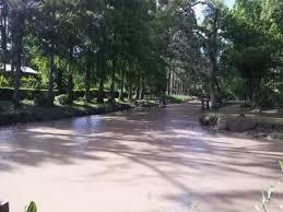 Foto Terreno en Venta en  Zona Delta Tigre,  Tigre  Arroyo Toro 1ra Secc al 2600