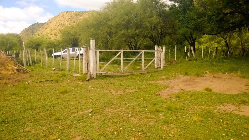 Foto Chacra en Venta en  San Fco Del Monte De Oro,  Ayacucho  San Fco del Monte de Oro Lotes y Chacras