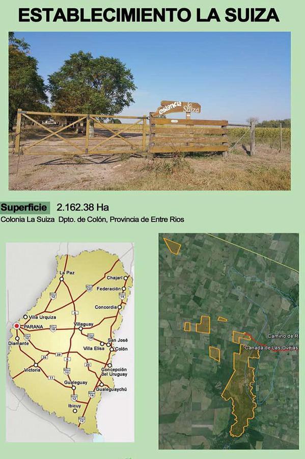 Foto Campo en Venta en  Pueblo Colorado,  Colon  2160 Has. Villa Elisa - Entre Rios