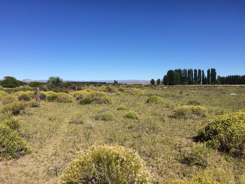 Foto Campo en Venta en  Gualjaina,  Languiñeo  Rio Chubut