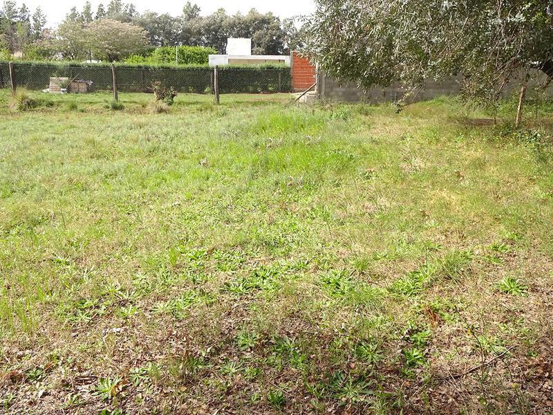 Foto Terreno en Venta en  Indios Ranqueles,  General Pico  25 e/ 44 y 46