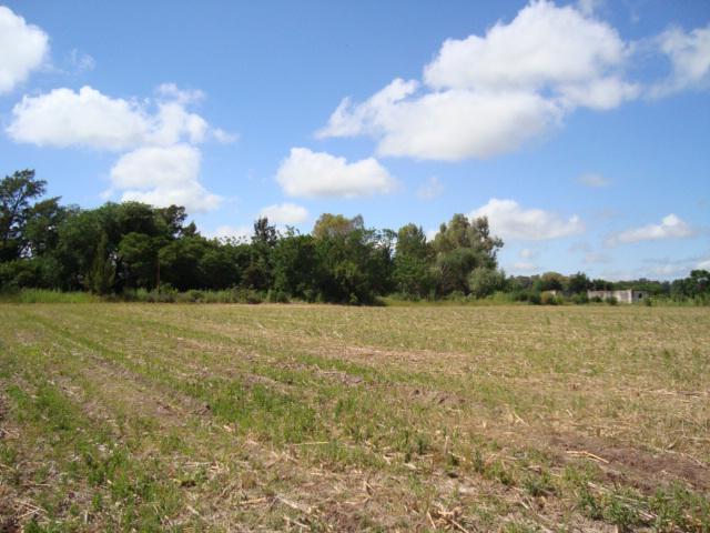 Foto Campo en Venta en  Pavon,  Exaltacion De La Cruz  Vende 19 ha. a metros de ruta