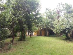 Foto Casa en Venta en  Centro,  Ingeniero Maschwitz  Paso al 700