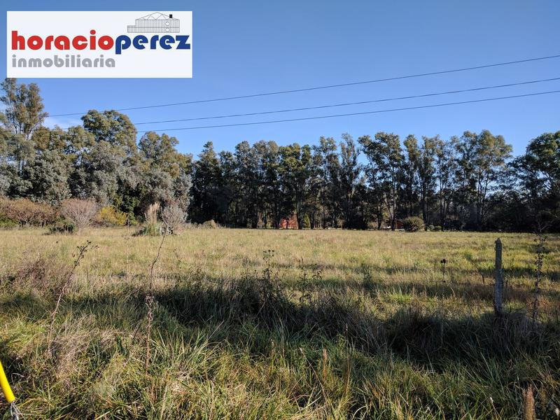Foto Terreno en Venta en  Altos De Robles,  Parada Robles  Altos De Robles