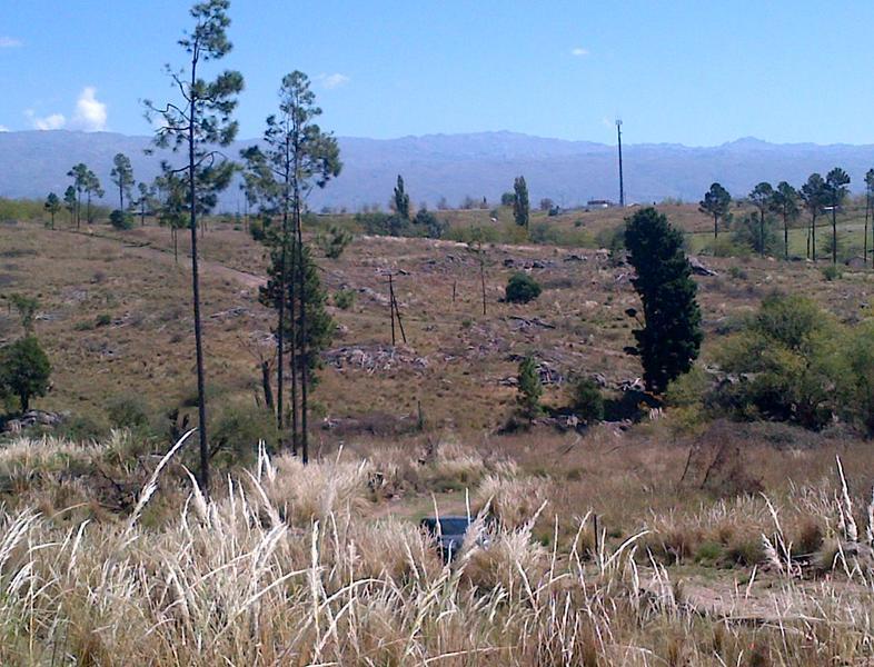 Foto Terreno en Venta en  Yacanto Calamuchita,  Calamuchita  La Aguada