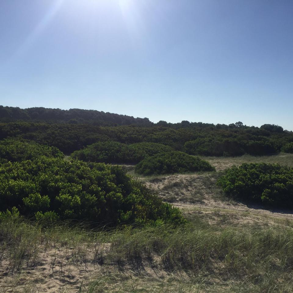 Terreno en Venta, 173 y playa 1 - Villa Gesell - Buenos Aires