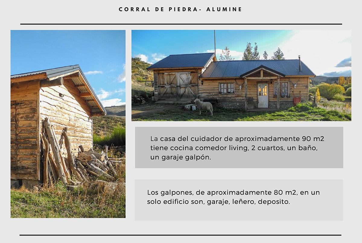 Foto Campo en Venta en  Rahue,  Alumine  Paraje Rahué, Aluminé - Neuquén