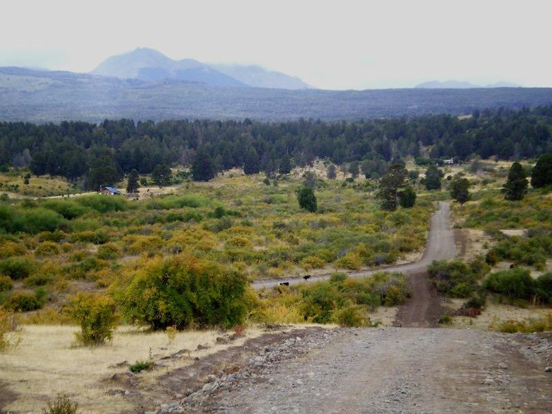 Foto Chacra en Venta en  Trevelin,  Futaleufu  Callejón de Palma / Ruta 71