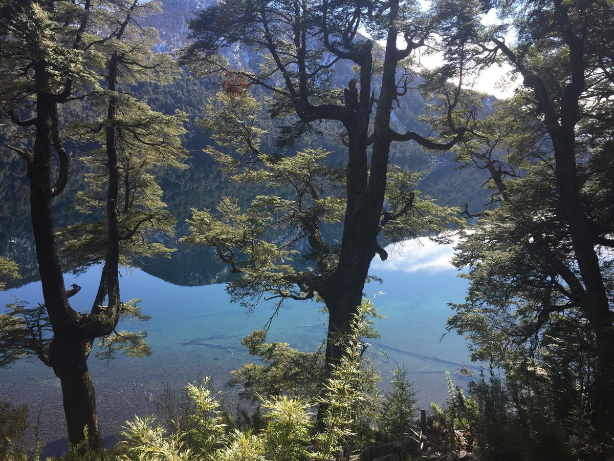 Foto Campo en Venta en  San Martin De Los Andes,  Lacar  Lago Hermoso