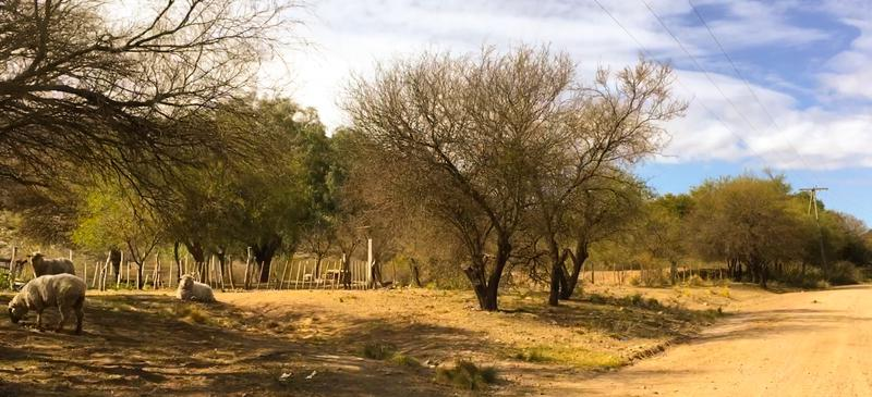 Foto Campo en Venta en  San Fco Del Monte De Oro,  Ayacucho  San Fco Del Monte De Oro