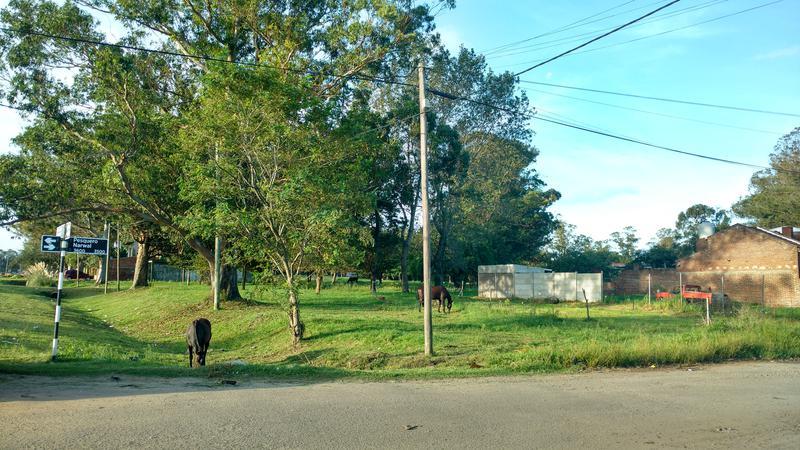 Foto Terreno en Venta en  Parque Independencia,  Mar Del Plata  Av. Newbery y Narwal