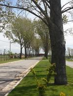 Foto thumbnail Terreno en Venta en  La Alameda,  Canning  Barrio La Alameda