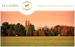 Foto thumbnail Terreno en Venta en  El Campo - Fincas Exclusivas Cardales,  Countries/B.Cerrado  El Campo. Panamericana km 61 Ruta 4