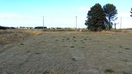 Foto thumbnail Terreno en Venta en  Norte,  General Pico  417 e/ 300 y 428