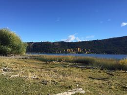 Foto thumbnail Chacra en Venta en  Cholila,  Cushamen  Ruta Provincial 15- Lago Pellegrini