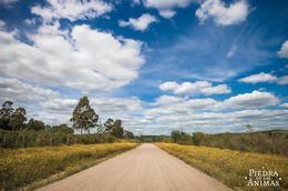 Foto thumbnail Chacra en Venta en  Pan de Azúcar ,  Maldonado  Camino del Buen Amigo - Ruta 60