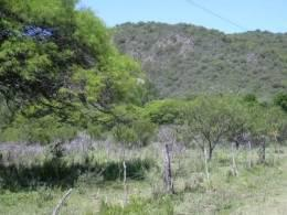 Foto thumbnail Terreno en Venta en  Villa General Belgrano,  Calamuchita  Villa General Belgrano Ruta 5 km 75