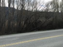 Foto thumbnail Chacra en Venta en  El Hoyo,  Cushamen  Ruta Nacional 40