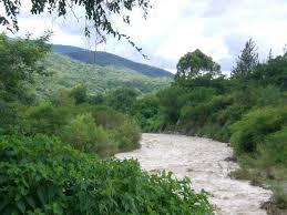 Foto thumbnail Terreno en Venta en  Tacanas,  Trancas  San Pedro de Colalao (Las Tacanas). Ruta al 300
