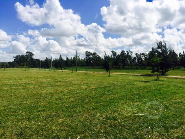 Foto Terreno en Venta en  Fincas de San Vicente,  San Vicente  Fincas de San Vicente Sporting Club