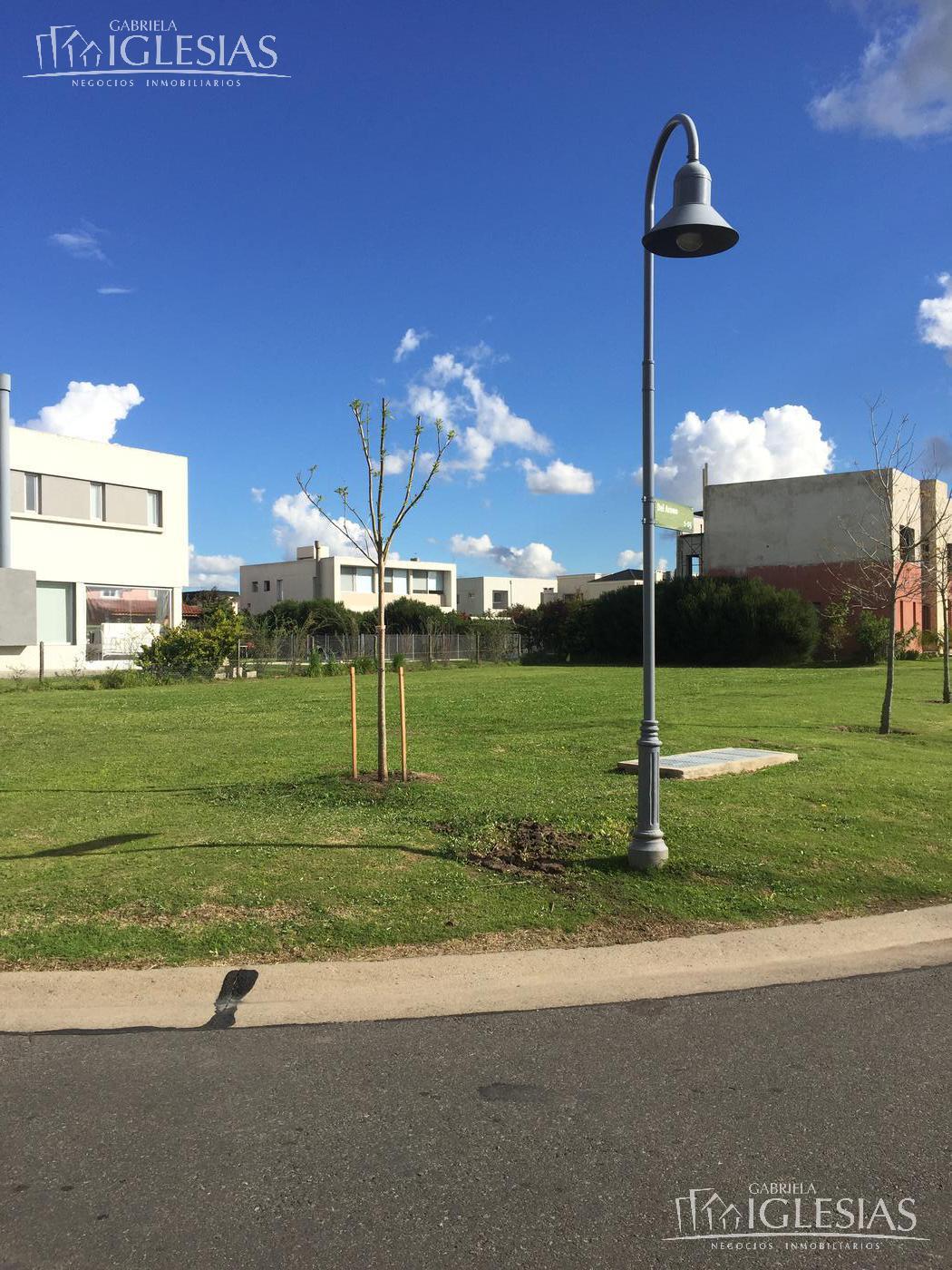 Terreno en Venta en Los Alisos a Venta - u$s 240.000