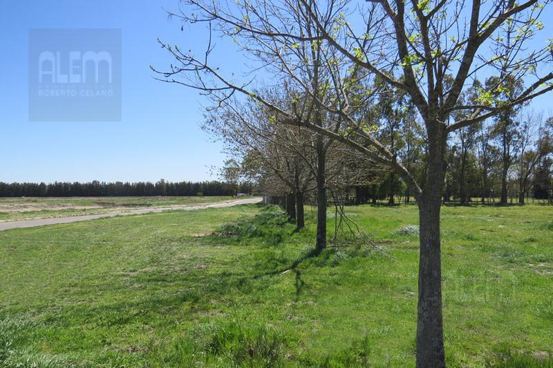 Foto Terreno en Venta en  Santa Ines,  Countries/B.Cerrado  Santa Ines