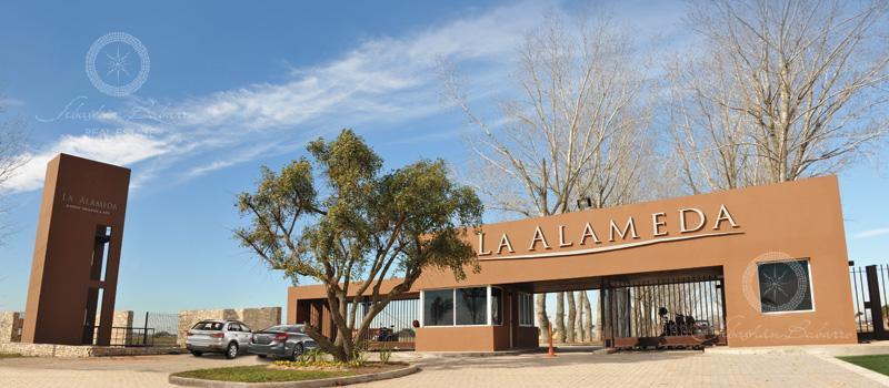 Foto Terreno en Venta en  La Alameda,  Canning  Barrio La Alameda