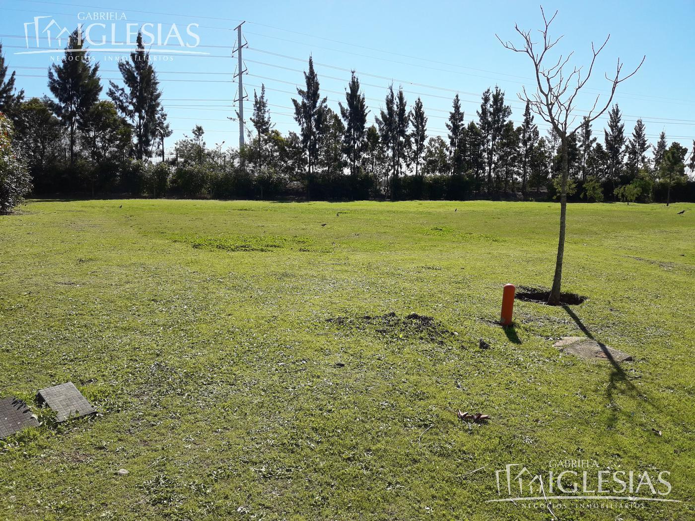 Terreno en Venta  en Nordelta Los Alisos